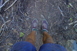 my 6th pair of shoes since the start of the appalachian trail. i call them mountain crushers. aka la sportiva wildcats.