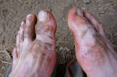 dirty feet. dust is everywehre on the pct. i can't keep these puppies clean.