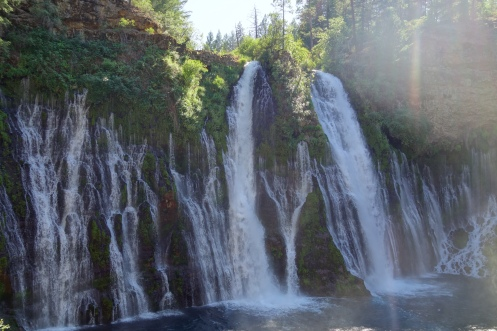 Burney Falls. The small falls are springs popping out of the rock. = cold swimming