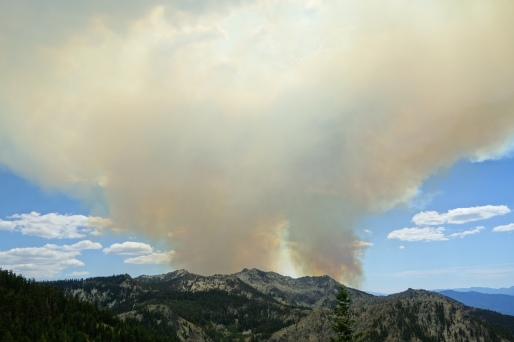 watched this fire grow for 2 days as we pass through right before this PCT section closed.