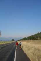 67 mile road walk to get around the northern california wild flowers.