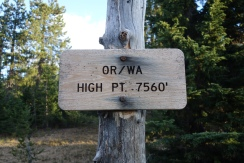 Highest point on the pct in oregon and washington. didn't really seem too high though.