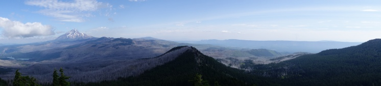 Mt jefferson in the distance.