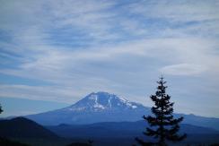Mt Adams.