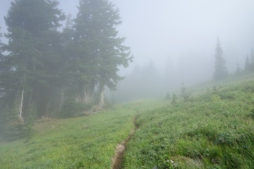 Hiking in the fog. cant see 30 feet in front of you.