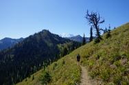 Beautiful ridge line with Mt. Rainier in the background