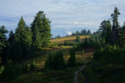 Glacier peak in the background of some nice looking trail.