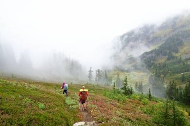 i am guessing there are big views and mountains out there. too foggy for me to see anything in the Glacier peak wilderness.