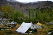 Epic camping in some Larch trees.